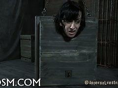 Втиснутая в коробку великолепная девушка подверглась пыткам